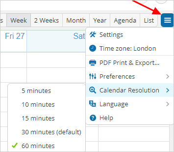 Change Time Resolution On Grid Views