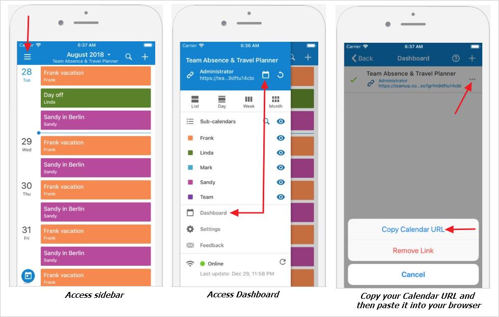 Access Teamup Calendar in a Mobile Browser (iOS)